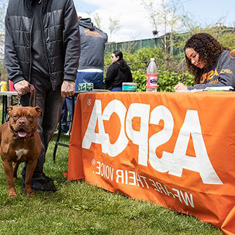 ASPCA table at Let's Paws f要么 Earth Day